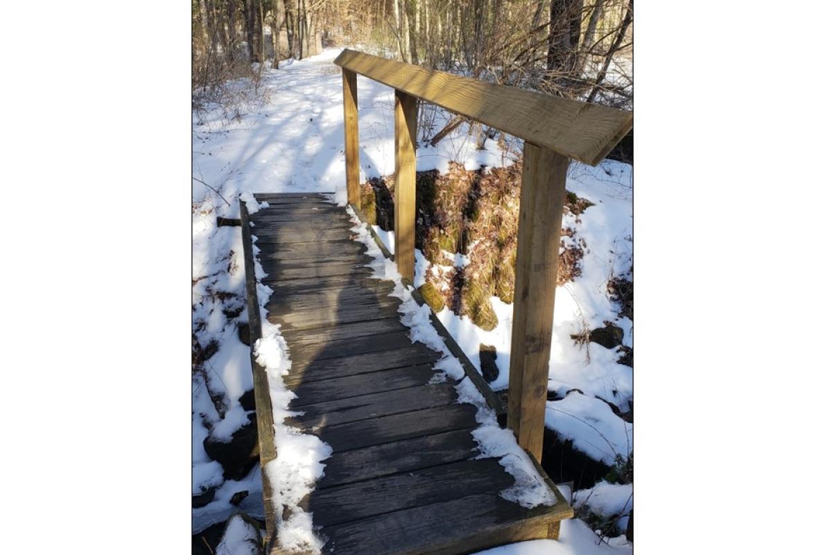 """""""Winter Crossing"""" by Marian Murphy"""