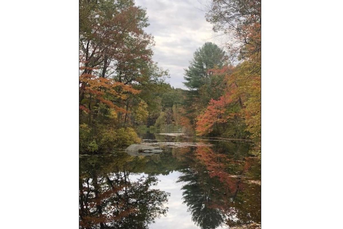 """Fall Morning in Crandall"" by Kathy Pagan"